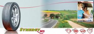 (Banner)Silverstone Synergy M5 - Tyre & Rim Service Malaysia ( Johor ) - ( YaKKah )